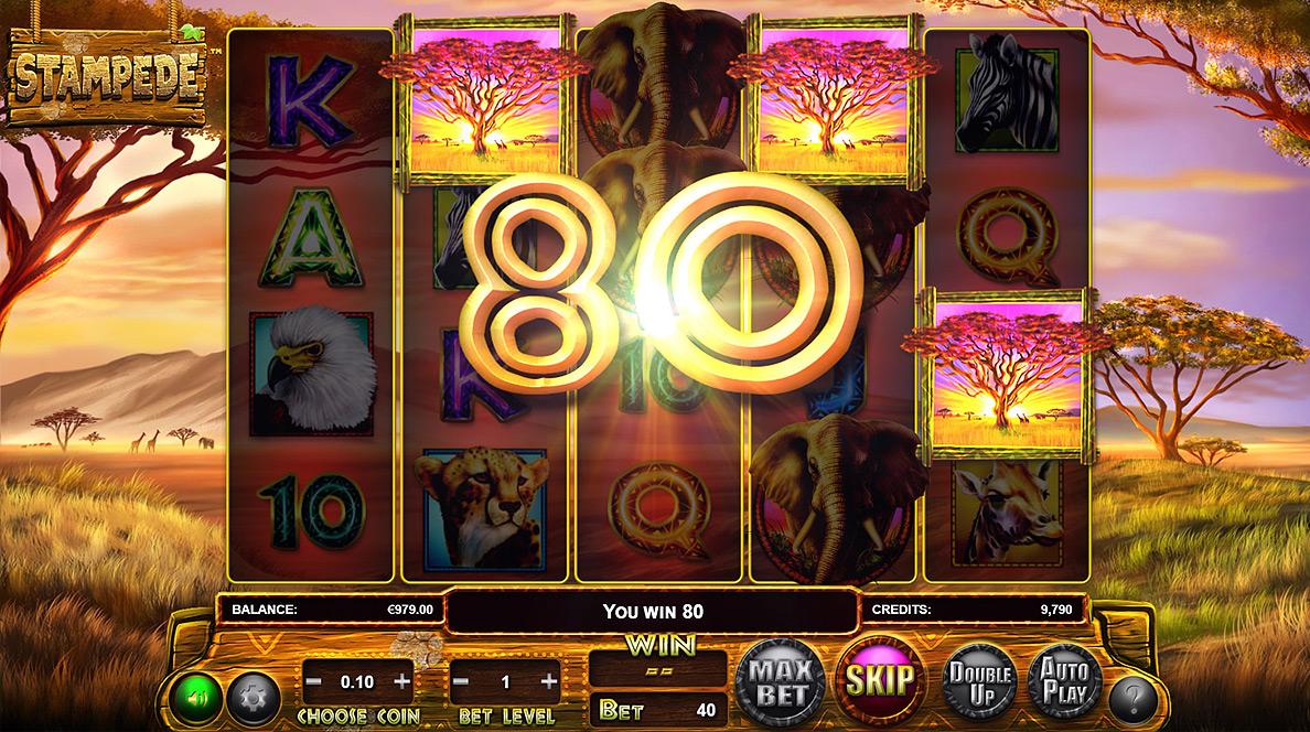 Stampede casino brunch best atlantic city casino restaurants